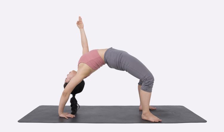 14天灵动致心流瑜伽--高级进阶