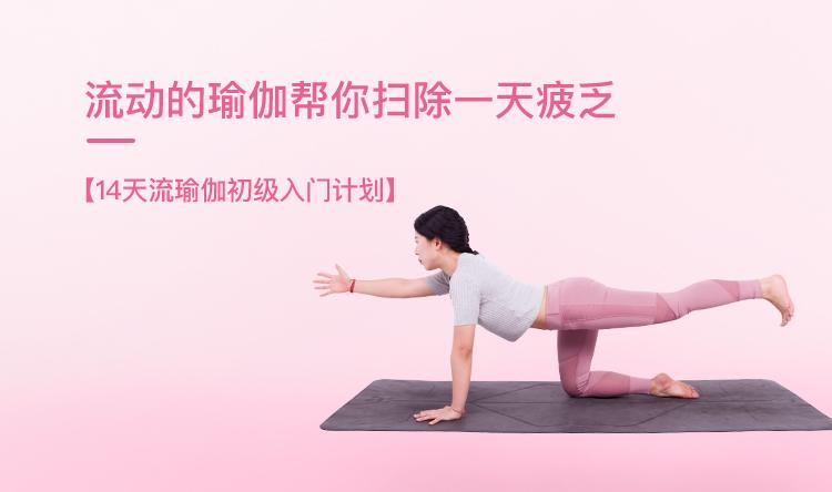 14天流瑜伽初級入門計劃